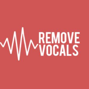 RemoveVocals.com Test
