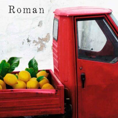 Simona Morani - Ziemlich alte Helden Roman Test